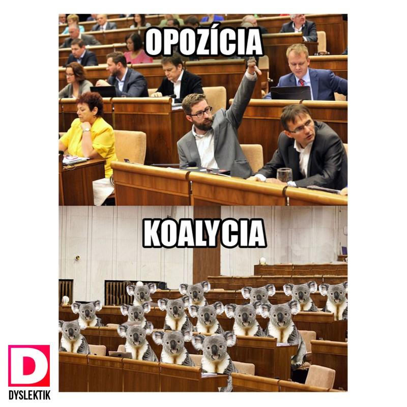 koalycia